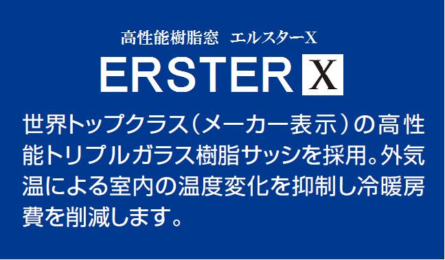 エルスターX
